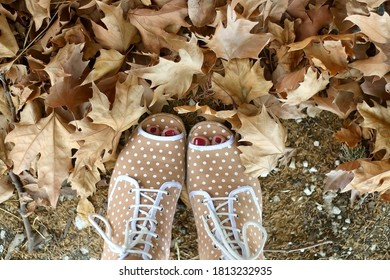 Unrecognizable person in colorful quirky shoes and fallen autumn leaves. Top view.