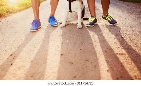 Unrecognizable seniors getting ready for a run with their dog outside in green nature