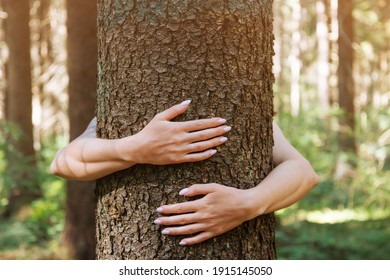 Unrecognizable woman hugging a tree trunk in summer forest. Concept of care for environment.