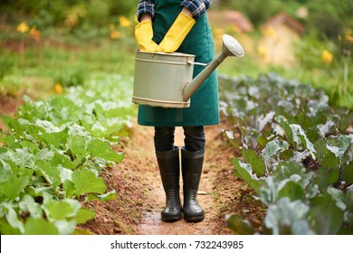 Unrecognizable woman wearing gumboots and apron holding watering pot in hands while standing between two vegetable beds at spacious backyard garden, blurred background