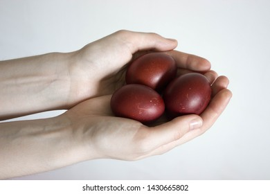 Unrecognizable women hand holding up for eggs. Knocking a red Easter egg. Old holiday tradition. Isolated on white background. Text empty space. Happy Easter!