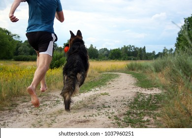 Unrecognizable young man is jogging with his dog barefoot in the yellow field at the background on a sunny summer day