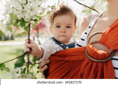 Unrecognizable young mother with her infant baby in sling outdoor. Mother is carrying her child and showing nature details. Baby holds a flower in his hand