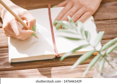 Unrecognizable young woman writing in notepad with a pen on wooden table, view of hands. Leaf plant in foreground.