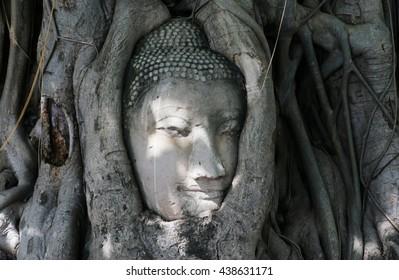 Unseen Thailand. buddha head statue in trees,Ayutthaya, Thailand