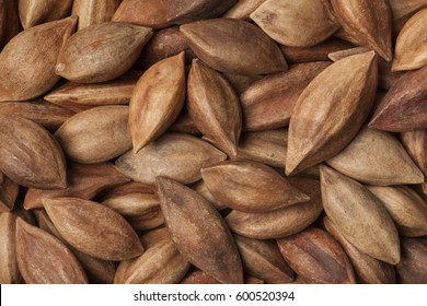 Unshelled pili nuts from the Philippines full frame