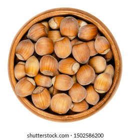 Unshelled ripe hazelnuts in a wooden bowl on white background. Seeds of Corylus avellana, a species native in Europe. Edible raw fruits with shells. Close up, from above. Isolated macro food photo.