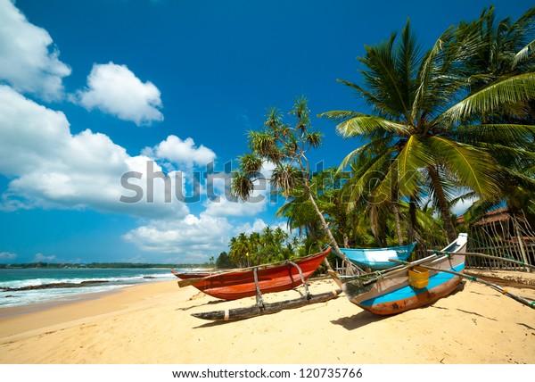Unberührter tropischer Strand mit Palmen und Fischerbooten in Sri Lanka