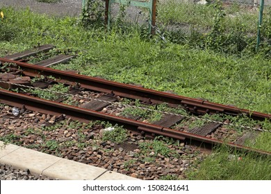 An unused railroad track. Rusty rails and weeds