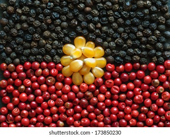 Unusual Aboriginal flag made of food and condiments