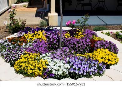 Circular Flower Bed Images Stock Photos Vectors Shutterstock