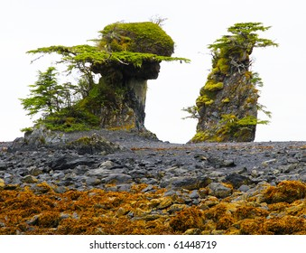 Unusual tidal formations near Sitka, Alaska - erosion above high tide