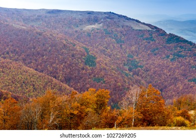 An unusually beautiful autumn in the mountains. Red trees.