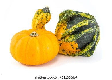 Unusually shaped green and yellow autumn squash and a small pumpkin.