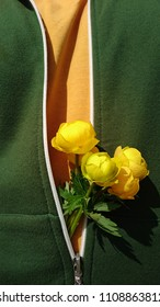 Unzipped zipper with bouquet of yellow wild spring floral  . yellow t-shirt against green hoody  background