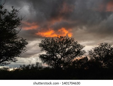 Upcoming thunderstorm over the camp Halali at the  Etosha Nationalpark in northern Namibia during summer