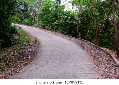 Uphill road with forest beside in countryside