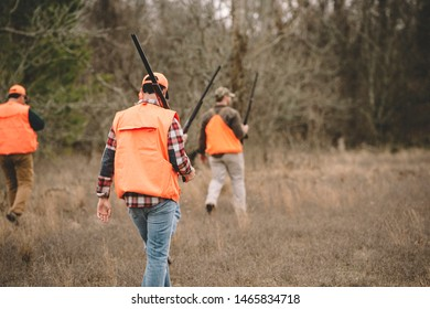 Upland Bird hunters walking in field.