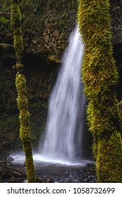 Upper Latourell Falls in the Columbia River Gorge in Oregon photographed through the trees with moss covering everything.