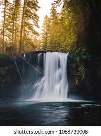 Upper North Falls in Silver Falls State Park in Oregon during sunset as golden light stream in behind the waterfall.