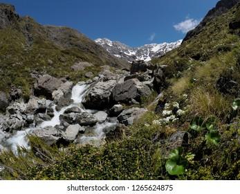Upper Otira Valley