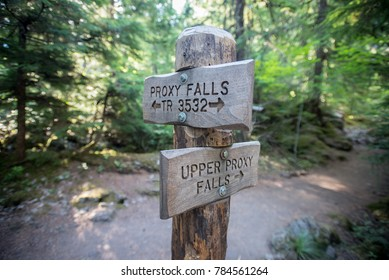 Upper Proxy Falls Turn Off Sign with blurred effect over trail