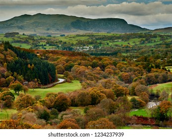 Upper River Dee Valley and Arenig Fawr in Autumn / Fall. A picturesque scene with trees in autumn / fall orange and gold colours. Near Bala Wales its a mountain peak with splendid views of Snowdonia.
