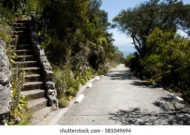 Upper Rock Nature Reserve - Gibraltar