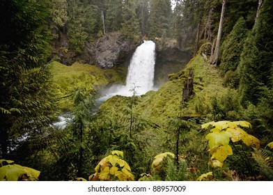 upper Sahalie Falls, Oregon, Mckenzie River, time of year is early November, very lush and green surroundings, flowing over a lava dam