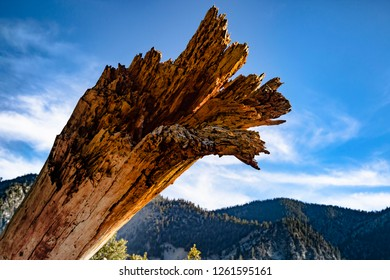An uprooted tree trunk in the foreground with grand mountains and a bright blue and white sky in the background.