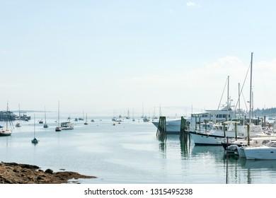 Upscale yachts and small fishing boats in the marina of touristic Southwest Harbor, Mount Desert island, Maine coast, USA