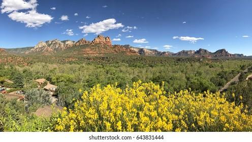 Uptown Sedona Landscape, Arizona