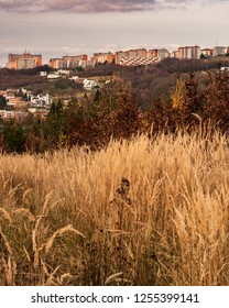 Urban Autumn Landscape Photography. Morning sunlight/sunrise in the city Zlin, Czech Republic, Europe with autumn mood of the location. Cloudy color sky as a background.