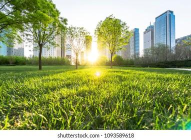Urban ecological environment