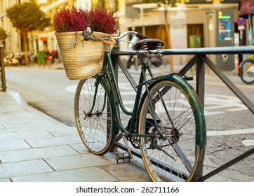 Urban green bicycle with a bucket of flowers at the sunset