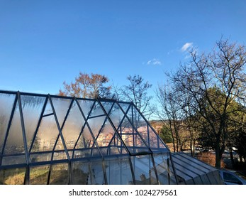 Urban greenhouse with city background