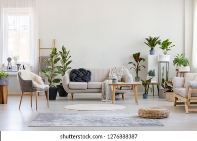 Urban jungle in bright living room interior with white couch with knot pillow and wooden furniture, copy space on empty wall