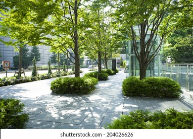 Urban landscape and trees