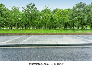 urban road with green trees