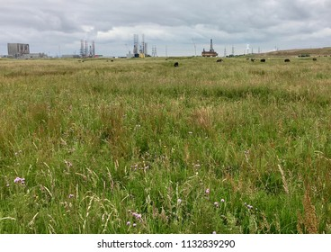 Urban and rural landscapes, Seaton Carew Sand Dunes, Hartlepool, England