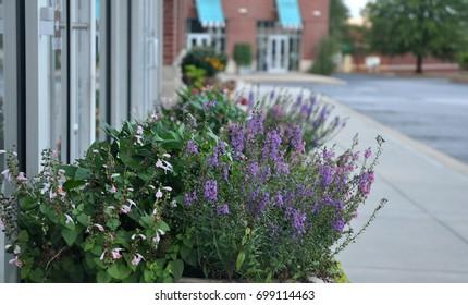 Urban strip mall with flower arrangements