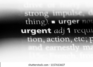 urgent word in a dictionary. urgent concept.