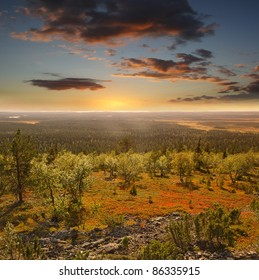 Urho Kekkonen National Park is a national park in Lapland, Finland.