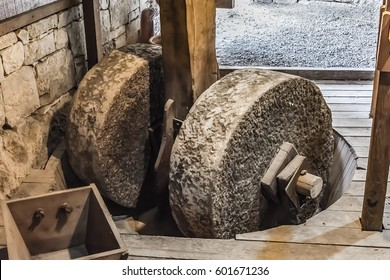Urla, Izmir, Klazomenai (B.C. 6th century, the oldest olive oil production plant in Anatolia, the Olive crushing mill is made of hard cylinders, made of hard stone and rotating about one mile)