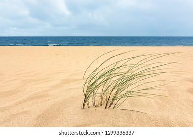 UrlLong stretching Beach on the island Sylt, Germanyaub Sylt 2015