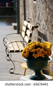 An urn full of bright yellow marigold flowers, in front of an empty bench.
