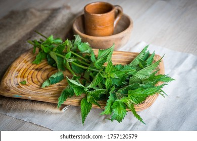 Urtica cut for drying as herbal tea, natural incense, or for dishes. Stinging hairs pant called nettle or stinging nettle. Nettle laying on a wooden tray with a wooden bowl and ceramic cup background.