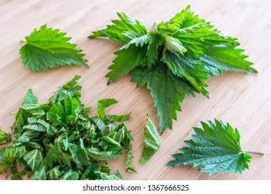 Urtica dioica (common nettle, stinging nettle, nettle leaf, or just a stinger) young fresh leaves prepared for cooking