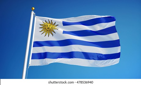 Uruguay flag waving against clean blue sky, close up, isolated with clipping path mask alpha channel transparency
