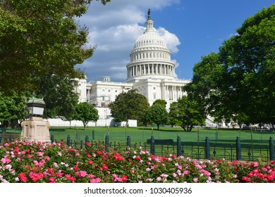 US Capitol Building in springtime - Washington DC USA